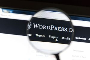 WordPress Maintence Plan